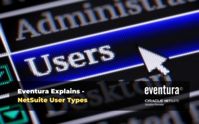 NetSuite User Types Explained